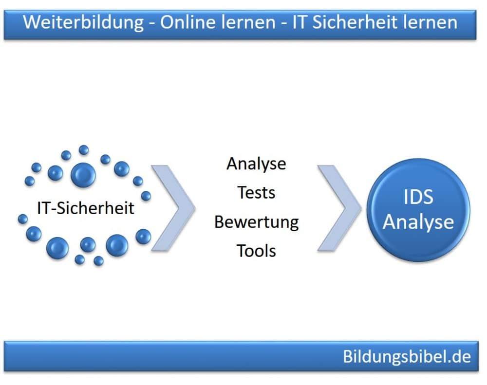 Online lernen IDS Intrusion Detection Systeme, Analyse, Tools, Tests und Bewertung