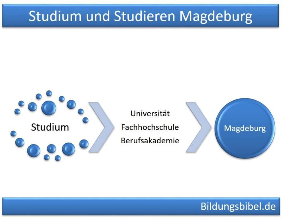 Studium und Studieren in Magdeburg an Universität, Fachhochschule oder Berufsakademie