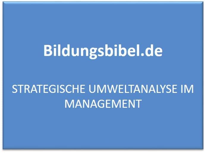 Strategische Umweltanalyse im Management