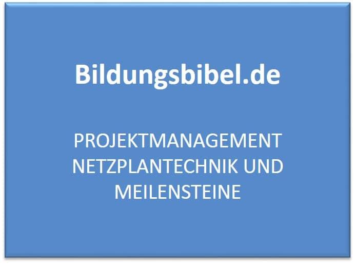 Projektmanagement Netzplantechnik und Meilensteine