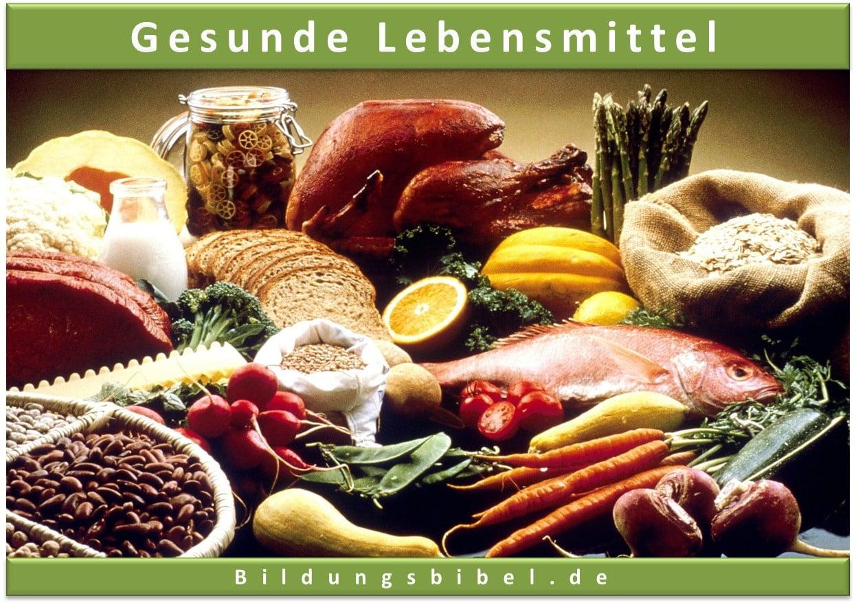 Gesunde Lebensmittel Fisch, Obst und Gemüse, Fleisch, energiereiche Ernährung